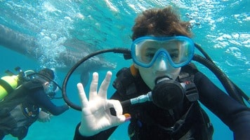 La plongée avec les dauphins a Dolphin Reef a Eilat accessible aux enfants