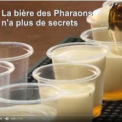 La levure de bière des Pharaons vieille de 3000 ans trouvée dans des jarres dans le Néguev