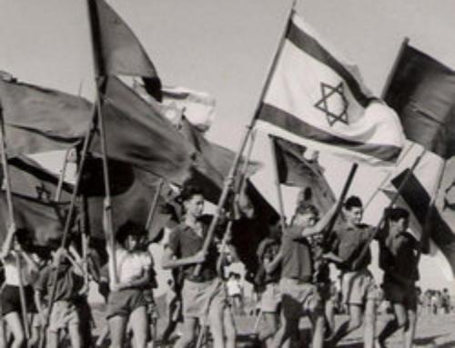 Volontariat en Israël : l'expérience du Kibboutz attire de plus en plus