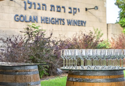 Route des Vins en Israël avec visites des vignobles et dégustations de vins