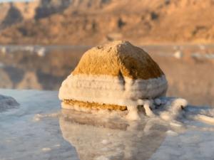 Le sel de la mer Morte sur une pierre